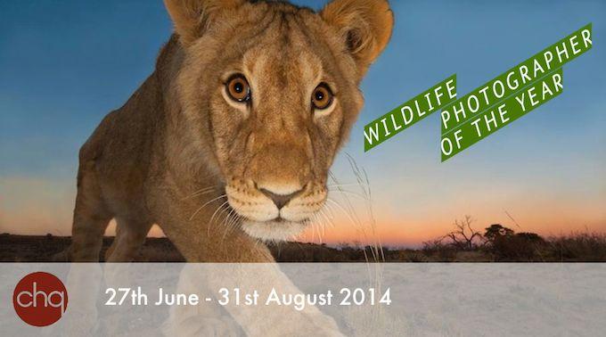 Wildlife Photographer of the Year @ Chq Building in Dulbin