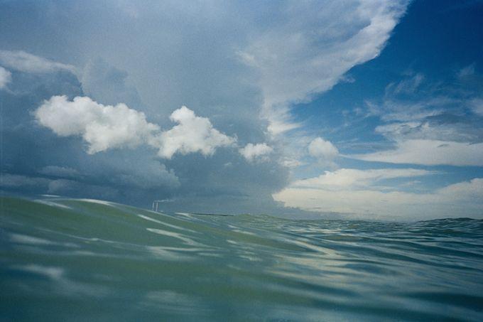 Gary Coyle -- Lovely Winter Swim