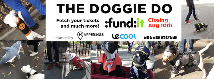 doggie do fundit campaign