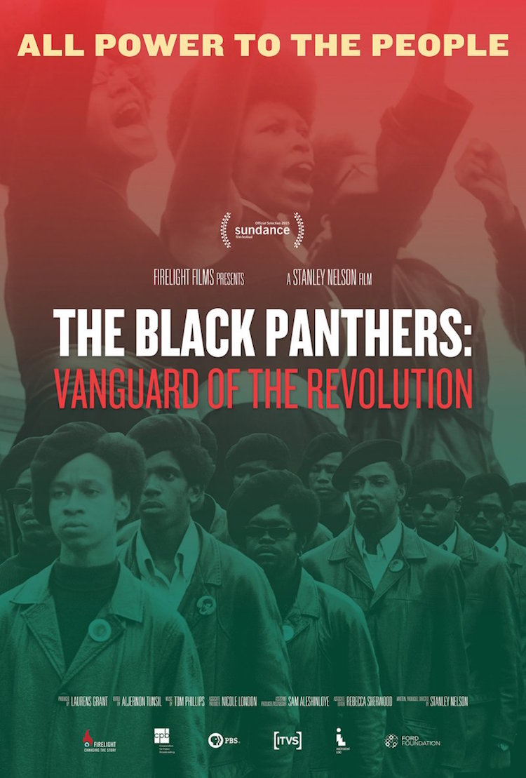 Black Panthers movie poster