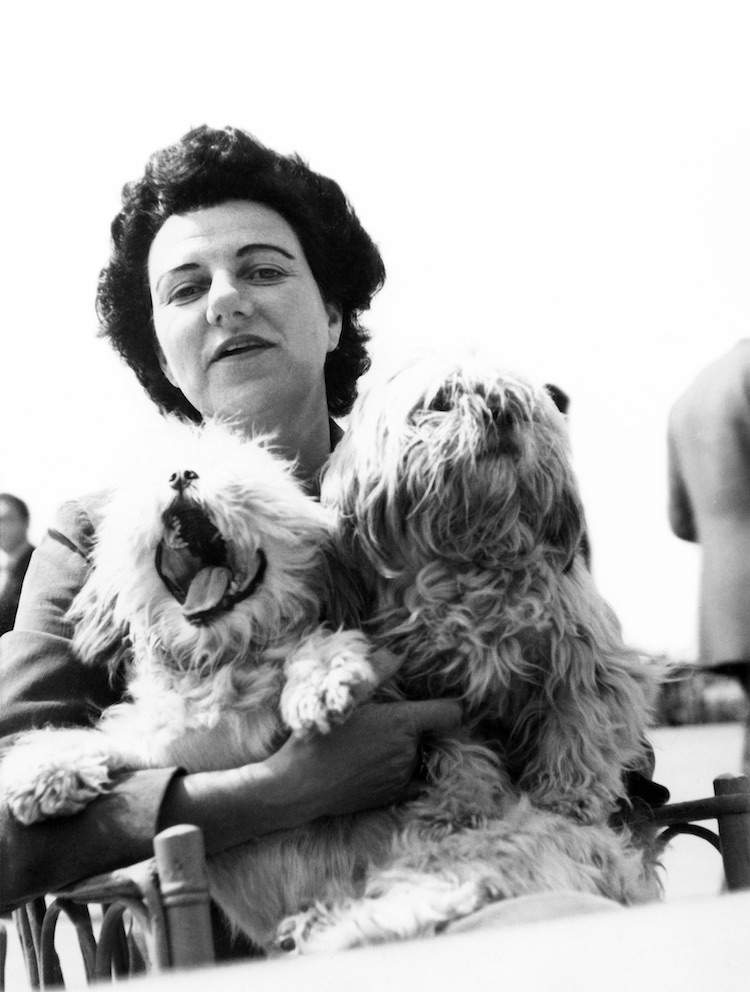 Peggy Guggenheim with pet dogs