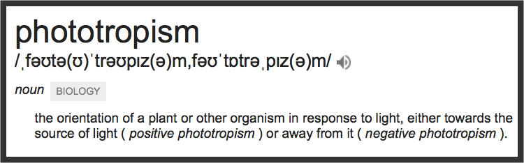 Definition of Phototropism via Google